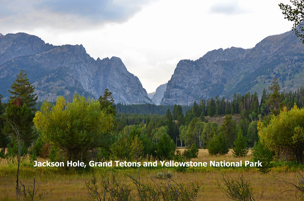 Grand Tetons and Yellowstone Photos
